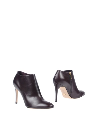 Sergio Rossi Booties Deep Purple U3XqJ