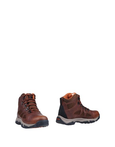 Timberland Ankle Boots Brown gQ5W8gbr4J
