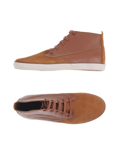 Pointer Sneakers Tan hL8Zy