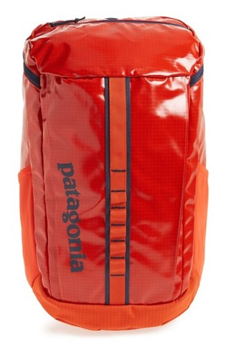 Patagonia 'S Black Hole 25 Liter Backpack Red Paintbrush Red mNHCajWofx