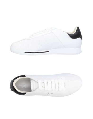 Geox Sneakers White cnmjBrjvLB