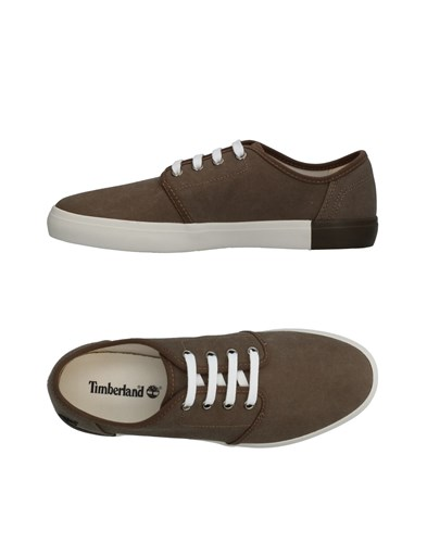 Timberland Sneakers Lead ZNtWE