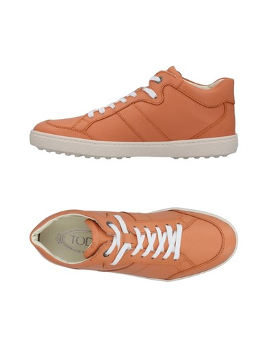 Tod's Sneakers Skin Color SnwHBx