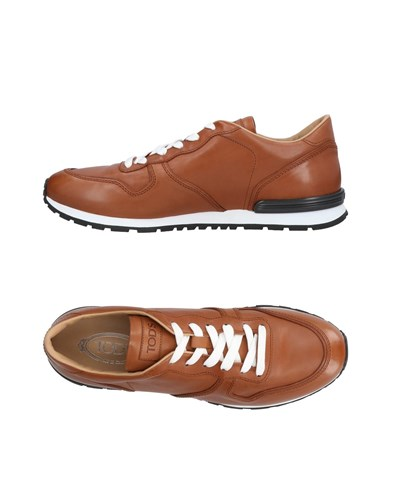 Tod's Sneakers Brown 7cnRwz5l
