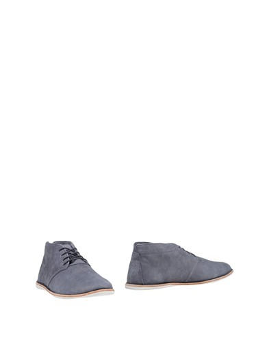 Timberland Ankle Boots Grey N22205VVg5
