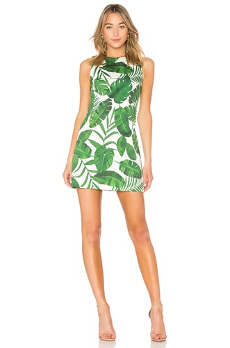Coley Alice Green Crew Olivia Dress zzwrCq5