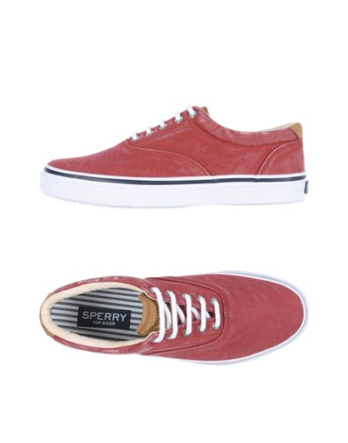 Sperry Top Sider Sneakers Brick Red Kw6qmH7