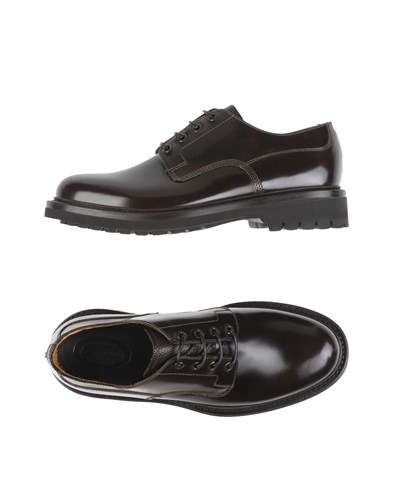 Barracuda Lace Up Shoes Dark Brown IqRqO2FYz5