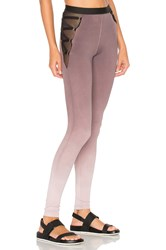 Blue Life Garter Leggings Gray