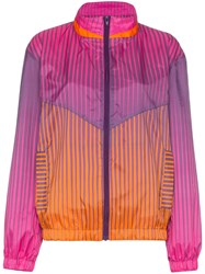House Of Holland Stripe Print Stand Collar Track Jacket Pink