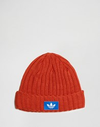 Adidas Originals Beanie In Orange Ay9311 Orange