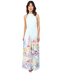 Ted Baker Ellore Hanging Gardens Border Maxi Mint Women's Dress Green