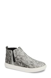 Coconuts By Matisse Camden Sneaker Grey Snake Print
