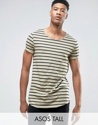 Asos Tall Longline Striped T Shirt With Curved Hem And Roll Sleeve Leuitenant Green