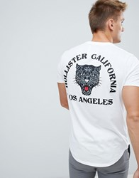 Hollister Tiger Logo T Shirt In White