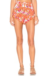 Spell And The Gypsy Collective Revolver Frill Shorts Coral