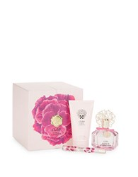 Vince Camuto Ciao Mothers Day Gift Set 179.00 Value No Color