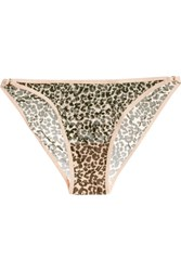 Love Stories Shelby Leopard Print Stretch Tulle Briefs Leopard Print