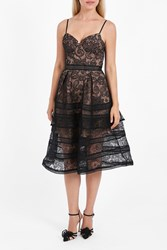 Self Portrait Women S Paisley Lace Dress Boutique1 Black