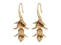 The Sak Petal Cluster Drop Earrings Gold Earring