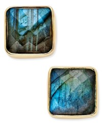 Paul And Pitu Naturally 14K Gold Plated Brass Labradorite Stud Earrings Multi