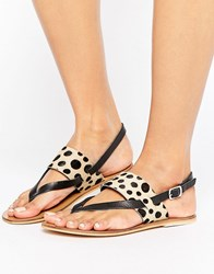 Warehouse Animal Toe Post Sandal Leopard Multi