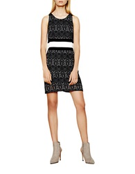 Autograph Addison Lace Banded Dress Black White
