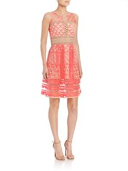 Jonathan Simkhai Bubble Embroidered Shift Dress Neon Pink Nude