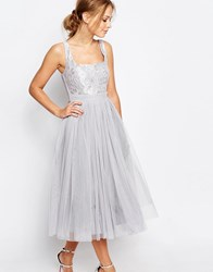 Little Mistress Tulle Midi Dress With Lace Silver Grey
