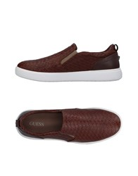 Guess Sneakers Cocoa