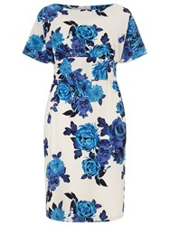 Studio 8 Serena Floral Print Dress Blue White