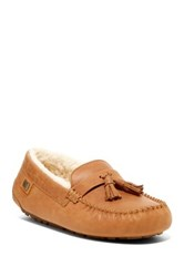 Australia Luxe Collective Hamilton Genuine Shearling Lined Slipper Brown
