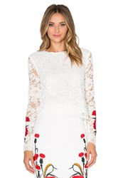 Endless Rose Floral Embroidered Crop Top White