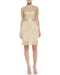 Notte By Marchesa Short Sleeve Lace And Tulle Cocktail Dress Gold