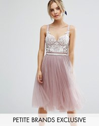 Chi Chi Petite Contrast Lace Corset Top Tulle Skirt Prom Dress Mauve Pink