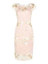 Adrianna Papell Fit And Flare Dress With Box Pleat Light Pink