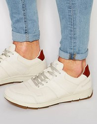 Boxfresh Ackworth Trainers Cream