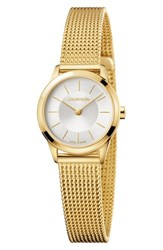 Calvin Klein Minimal Mesh Strap Watch 24Mm Gold Silver