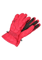 Salomon Cruise Gloves Lotus Pink