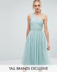 Little Mistress Tall Full Prom Tulle One Shoulder Midi Dress With Lace Applique Sage Green