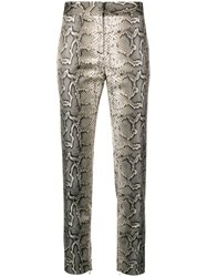 Tom Ford Python Printed Tailored Trousers Nude And Neutrals