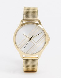 Tommy Hilfiger 1791462 Gold Strap Watch Black
