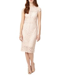 Phase Eight Cap Sleeve Lace Dress Cameo