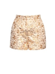 Dolce And Gabbana Floral Brocade High Rise Shorts