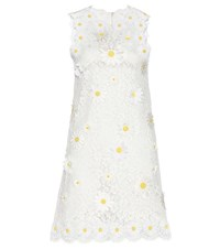 Dolce And Gabbana Embellished Lace Shift Dress