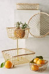 Anthropologie Brushed Wire Kitchen Baskets Gold