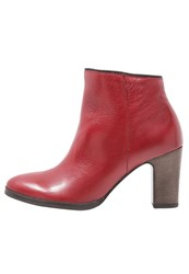 Gabor Ankle Boots Red Dark Brown
