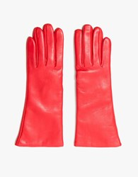 Trademark Flowered Glove In Red