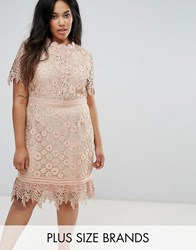 Truly You Contrast Lace Mini Dress With Insert Trim Pink