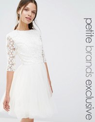 Chi Chi Petite London 3 4 Sleeve Lace Top Skater Dress With Chiffon Skirt Cream